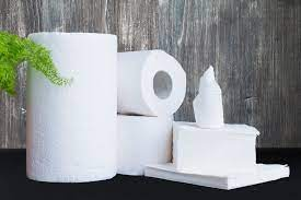 Sanitary Paper Product Market